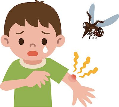 Should I be concerned about my children getting the Zika