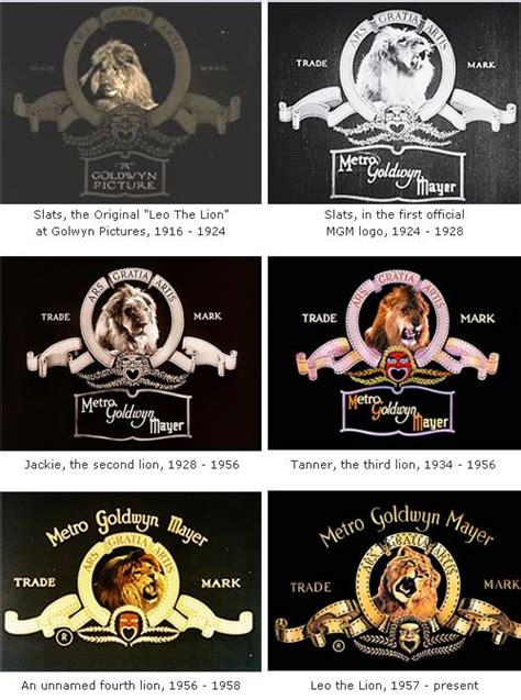 Meaning MGM logo and symbol   history and evolution