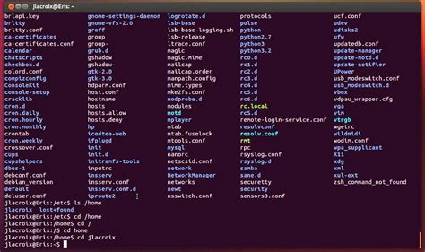Linux Commands for Beginners: 02 - Navigating The File