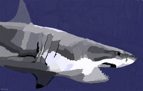 Great White Shark Abstract ← a other Speedpaint drawing by
